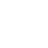Society Broke Youth
